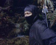 nin ninja
